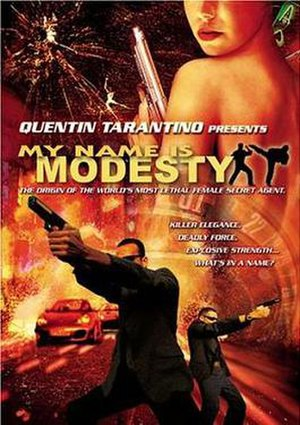 My Name Is Modesty - DVD cover