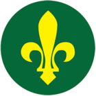 girl scouts of jamaica   wikipedia