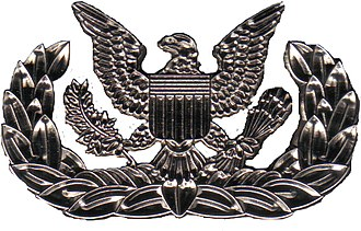 State Guard Association of the United States - Basic MEMS badge