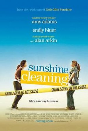 Sunshine Cleaning - Promotional film poster