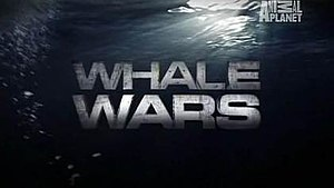 Whale Wars - Title screenshot of season 2.
