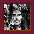"""George Harrison - The Vinyl Collection"" box cover.jpg"