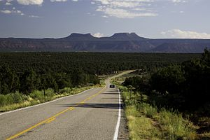 Bears Ears - The Bears Ears from Utah State Route 261