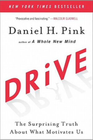 Drive: The Surprising Truth About What Motivates Us - Hardcover edition