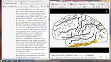 Wikipedia talk:Media Viewer - Wikipedia