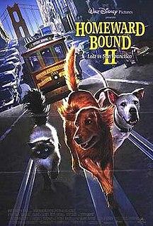 <i>Homeward Bound II: Lost in San Francisco</i> 1996 American film
