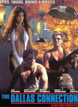 The Dallas Connection - Image: Poster of the movie The Dallas Connection