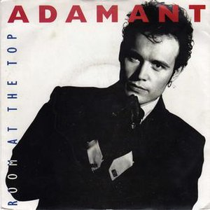 Room at the Top (song) - Image: Room at the Top (Adam Ant single) coverart
