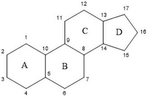 Steroidal aromatase inhibitor - Figure 1: The steroid scaffold. Base structure of steroids