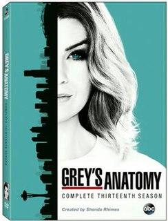 <i>Greys Anatomy</i> (season 13) season of television series