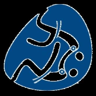 Judo at the 2016 Summer Paralympics - Image: Judo, Rio 2016 (Paralympics)