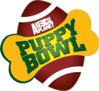 <i>Puppy Bowl</i> Parody of the Super Bowl involving domestic dogs instead of humans, hosted by Animal Planet