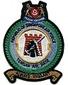 RSAF TAB shoulder patch.jpg