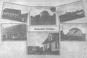 Srbac - A post card of Bosanski Svinjar from 1911