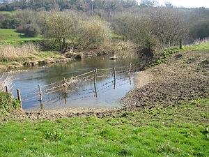 """The River Stour at Durweston """"Sheep Dip"""""""