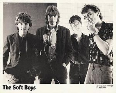 Picture of a band or musician: The Soft Boys