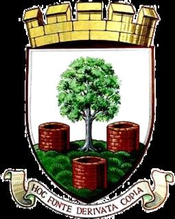 Wells City F.C. Association football club in England