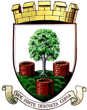 Wells City F.C. - Image: Wells City F.C. logo