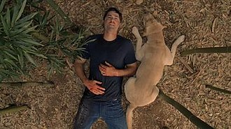 The End (Lost) - Jack Shephard (Matthew Fox) in the bamboo forest with Vincent by his side. This scene mirrors the first scene of the series.