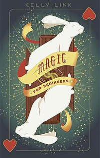 <i>Magic for Beginners</i> (short story collection)