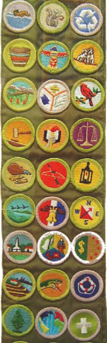 Merit Badge Boy Scouts Of America Wikipedia