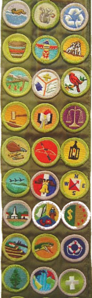 Merit badge (Boy Scouts of America) - A sample merit badge sash: From left to right, starting at top; 1 Swimming, Mammal Study, Environmental Science; 2 Basketry, Wood Carving, Dog Care; 3 Wilderness Survival, Emergency Preparedness, Bird Study; 4 Public Speaking, Scholarship, Law; 5 Rifle Shooting, Archery, Metalwork; 6 Fish and Wildlife Management, Citizenship in the Nation, Orienteering; 7 Citizenship in the Community, Communications, Personal Management; 8 Soil and Water Conservation, Reptile Study, Lifesaving; 9 Forestry, Citizenship in the World, Safety