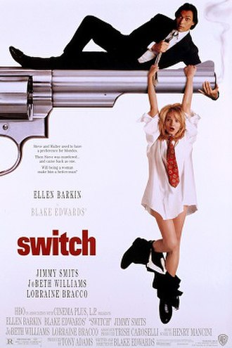 Switch (1991 film) - Theatrical release poster