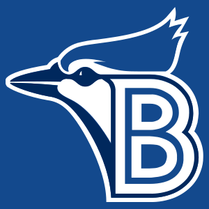Bluefield Blue Jays - Image: Bluefield Blue Jayscap