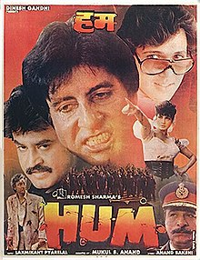 Download Hum 1991 Hindi 480p | 720p WEB-DL