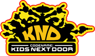<i>Codename: Kids Next Door</i> television program
