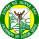 Official seal of Nueva Era