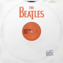 A mock-up of a vinyl record with a plain white cover that has the album title and artist on it