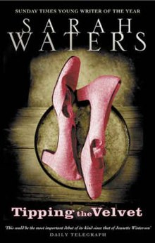 Image of book cover, mostly black with Sarah Water's name at top and two pink pumps (women's shoes) laying on a wooden surface fading into the black. The title is under the image