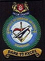 144Sqn shoulder patch.jpg