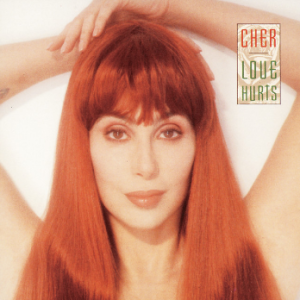 Love Hurts (Cher album) - Image: Cher Love Hurts
