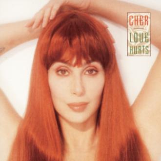 Love Hurts (Cher album) - Image: Cher Love Hurts