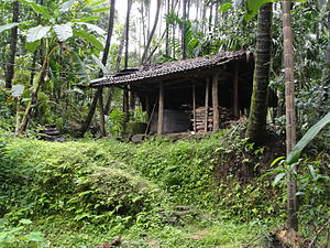 Kabbinale - Simple Farm House inside areca garden at hilly region Kabbinale,India