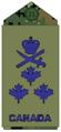 Air Force olive LGen.png