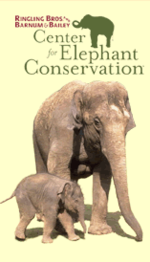 Center for Elephant Conservation - CEC logo