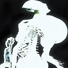 Entranas album art by Arca.jpg