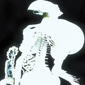 Entrañas - Image: Entranas album art by Arca