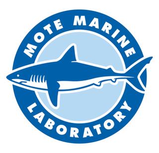 Mote Marine Laboratory non-profit organisation in the USA