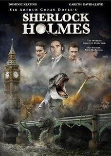 <i>Sherlock Holmes</i> (2010 film) 2010 film by Rachel Lee Goldenberg