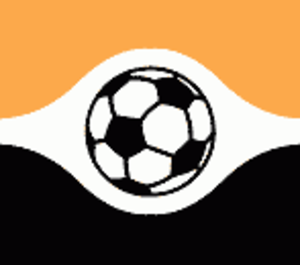 Volán FC - Logo of Volán FC