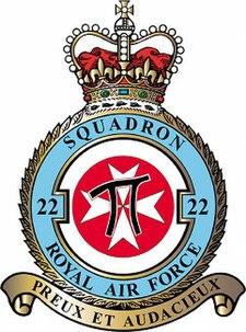 22 Squadron badge