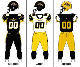 2010 Hamilton Tiger-Cats season Season of Canadian Football League team the Hamilton Tiger-Cats