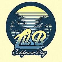 California Boy - Wikipedia