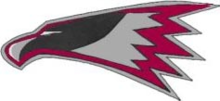 Roy J. Wasson High School Thunderbirds.png