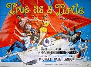 True as a Turtle - Original British quad poster