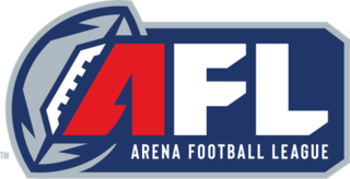 Arena Football League Professional indoor American football league